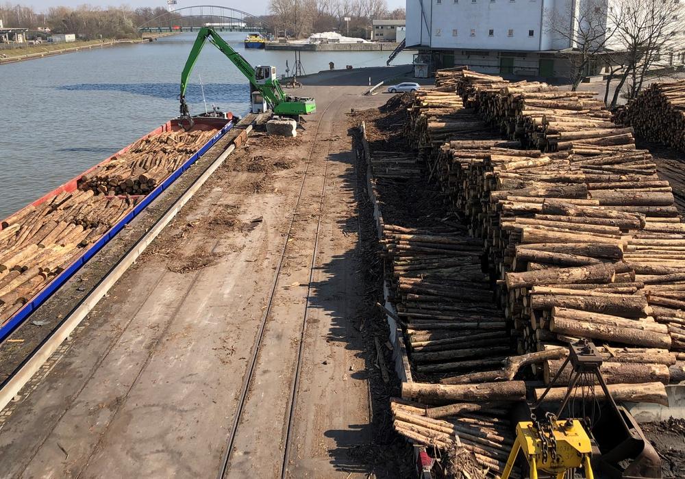 Holzverladung im Hafen Braunschweig.