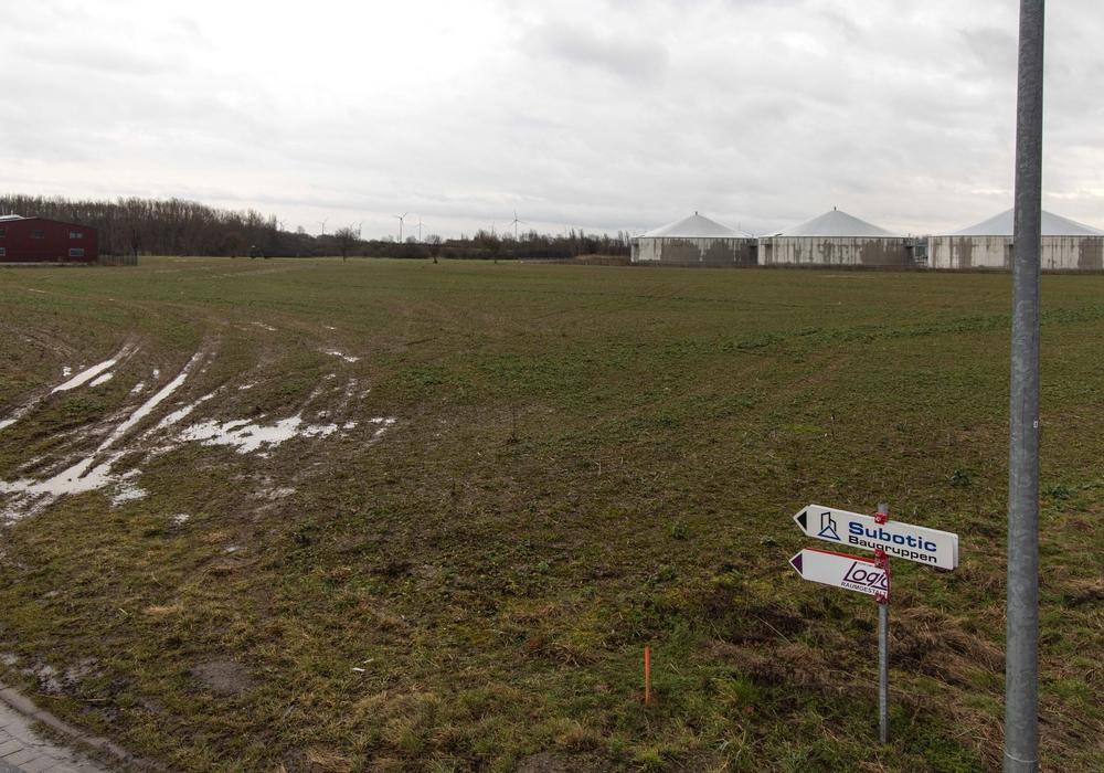 Auf diesem leeren Gelände will der US-Versandhändler Amazon ein neues Verteilzentrum bauen.