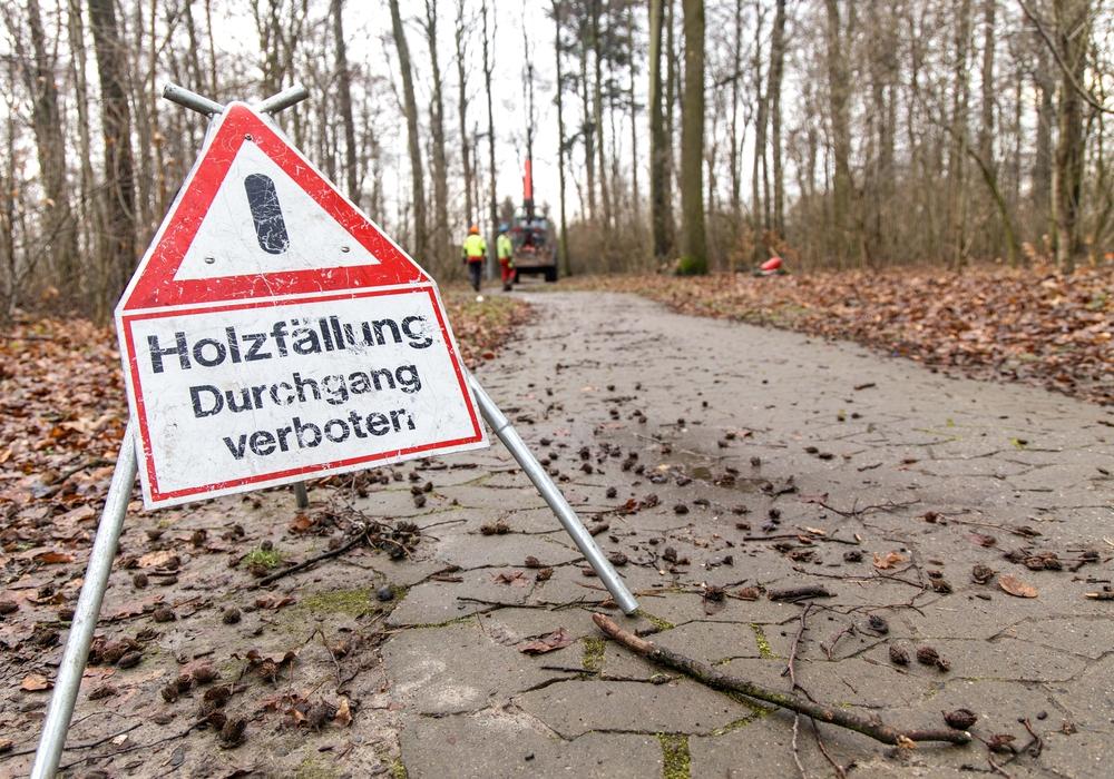 Die so gekennzeichneten Bereiche des Waldes dürfen in Kürze nicht mehr betreten werden.