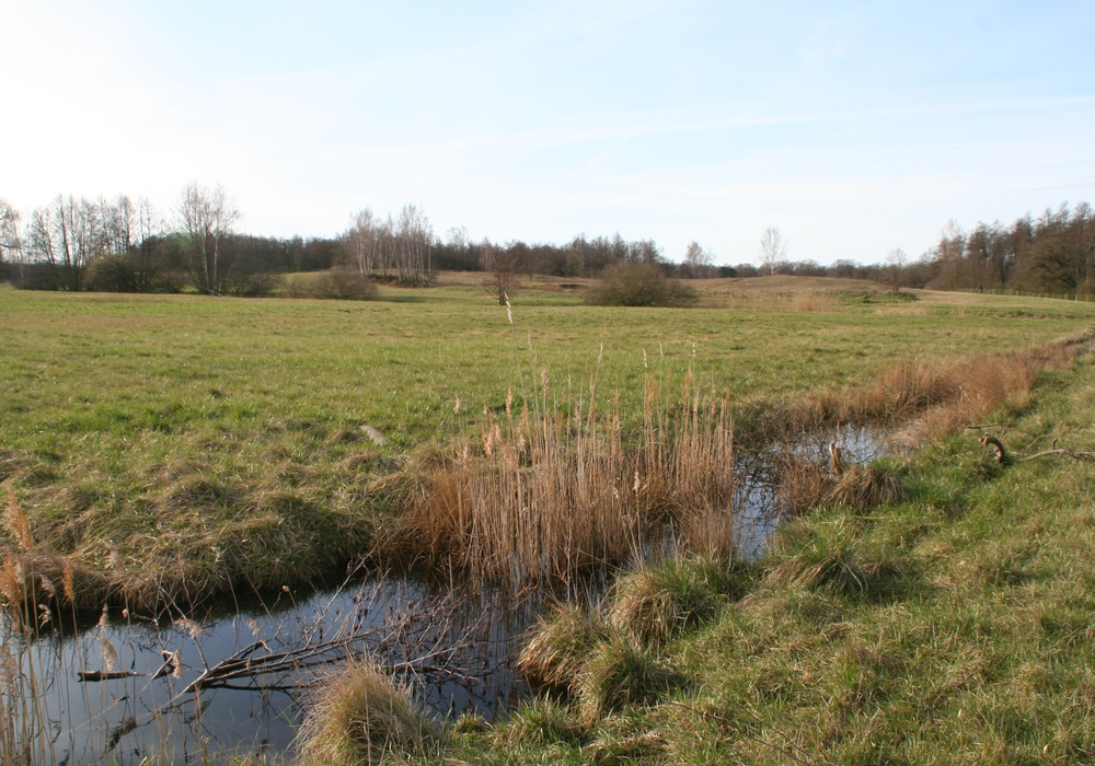 Blick auf das Naturschutzgebiet Herzogsberge bei Cremlingen.