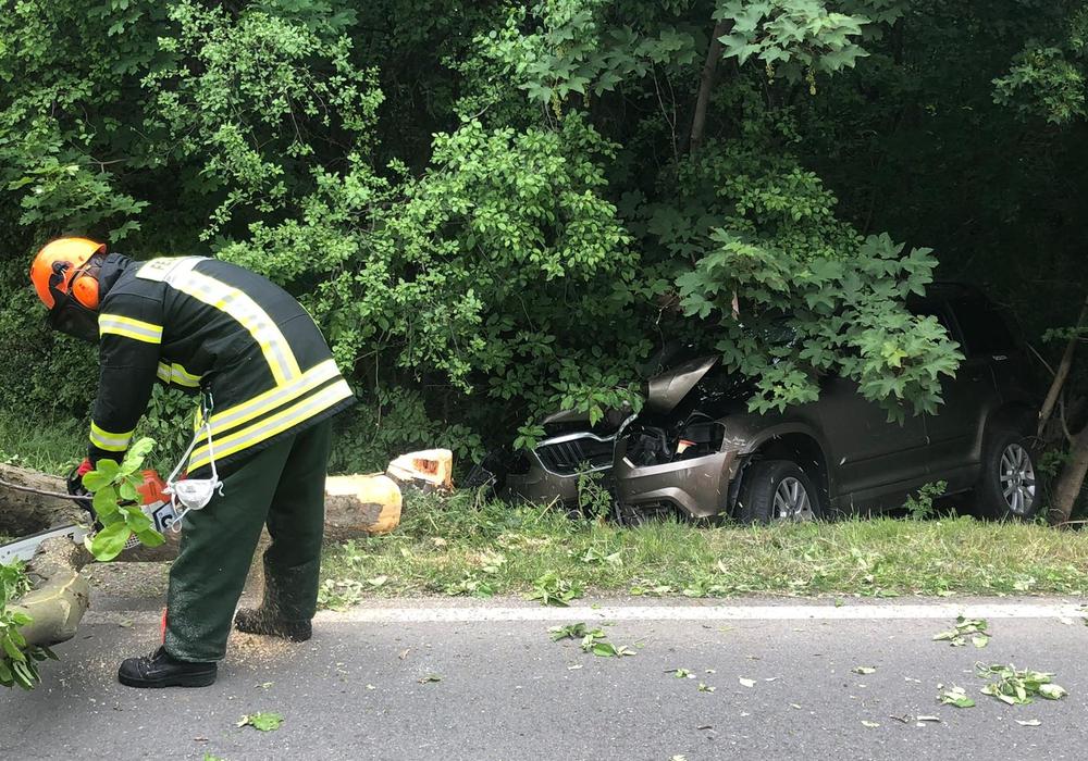 Ein Baum musste gefällt werden, um das Unfallfahrzeug wieder auf die Straße ziehen zu können.
