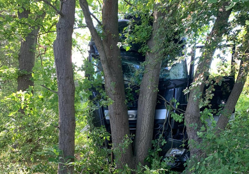 Der LKW wurde durch die Bäume gestoppt.