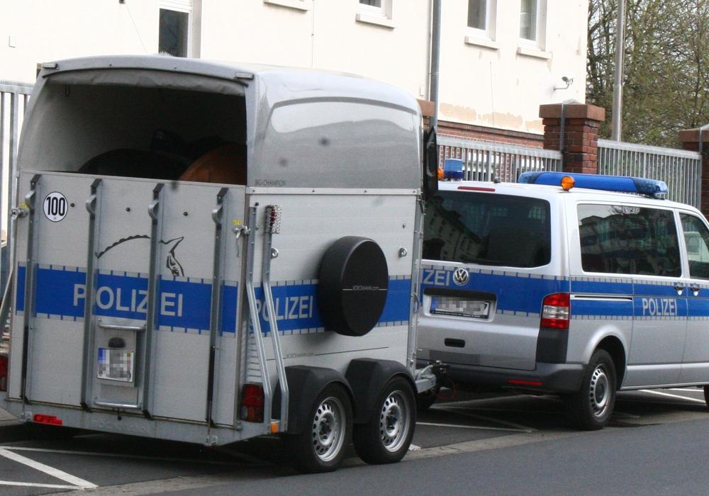 Die Polizei in Peine wird von der Reiterstaffel unterstützt. (Archivbild)