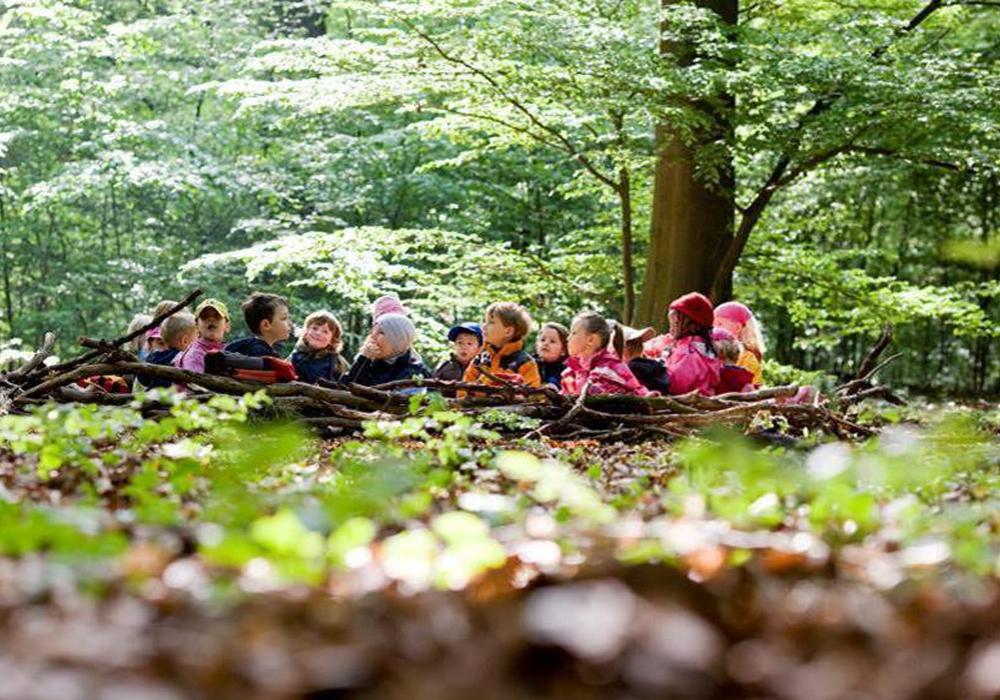 Schulkinder machen im Räuberwald nach einer Woche ihr Forscher-Diplom.