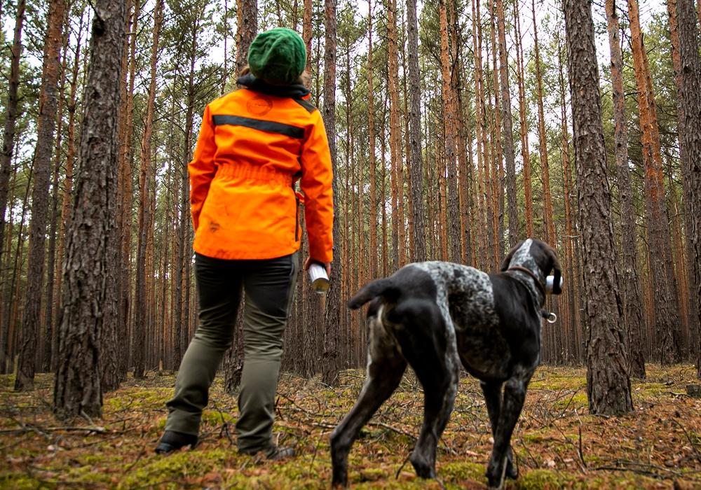 Dürre, Hitze und Stürme setzen dem Wald zu. Die IG BAU fordert mehr Forstpersonal, um den klimagerechten Umbau heimischer Wälder voranzubringen.