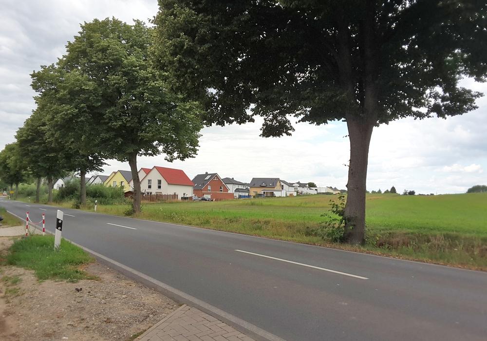 Die Baufläche für den bezahlbaren Wohnraum in Flechtorf.