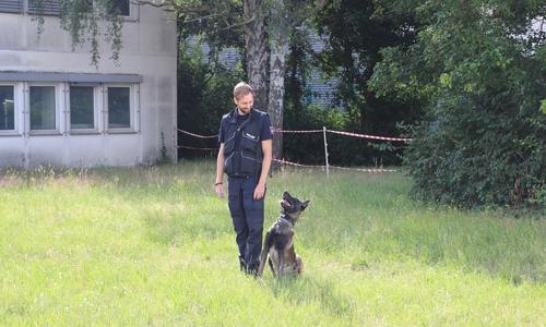 Polizeikommissar Philipp S. und Zulu. Polizeihunde müssen auf die Befehle ihrer Hundeführer perfekt reagieren. Was früher erzwungen wurde, funktioniert heute mit positiver Bestärkung und einem guten Verhältnis.