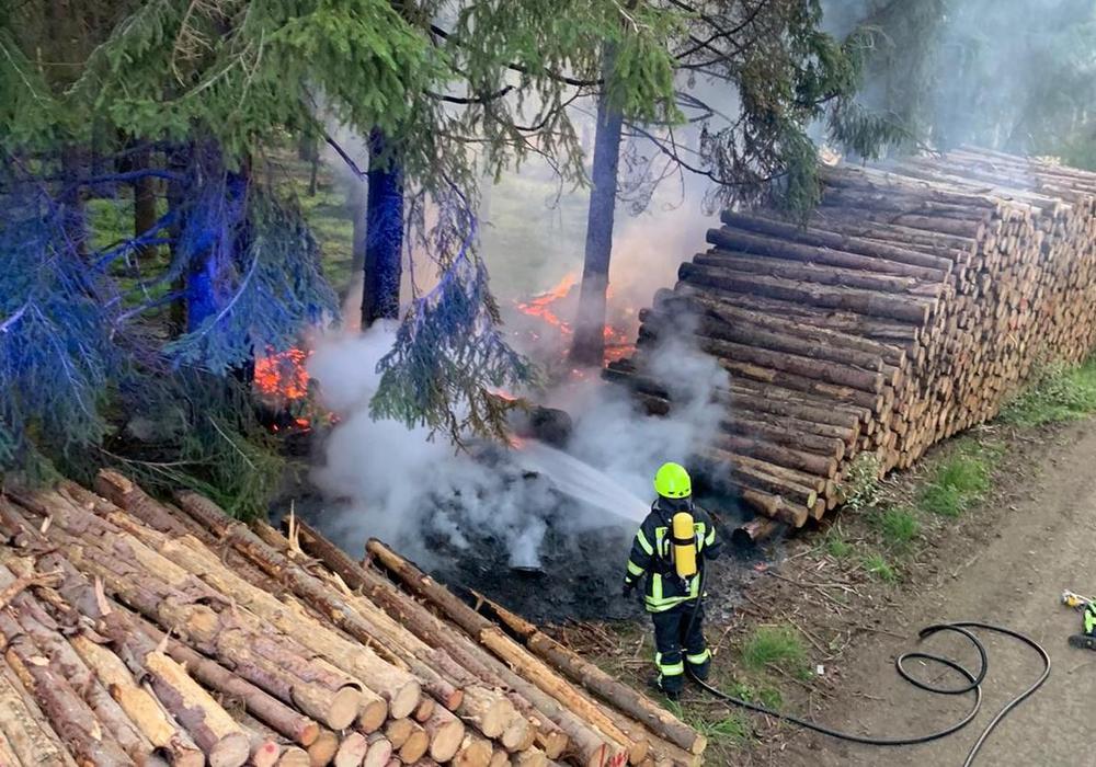 Einsatzkräfte bekämpfen das Feuer im Unterholz.