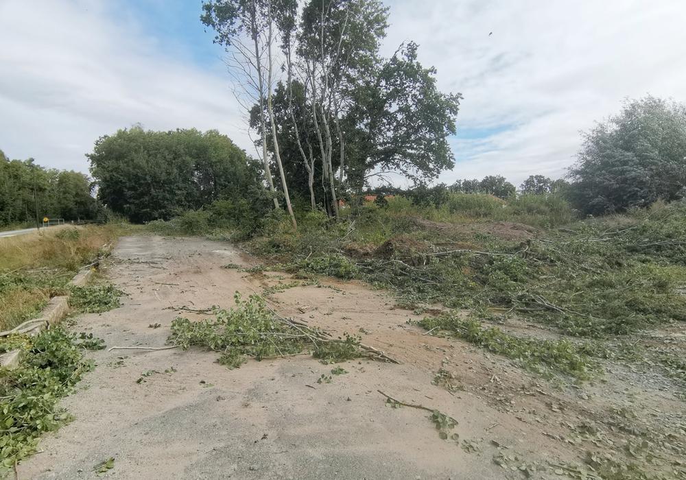 Begonnen wird mit der Errichtung einer Baustraße, um die Zufahrt zum Gelände sicherzustellen.