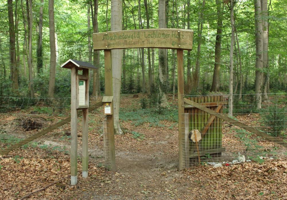 """Auf dem Tierfriedhof """"Abschiedswald Lechlumer Holz"""" finden Haustiere ihre letzte Ruhe."""