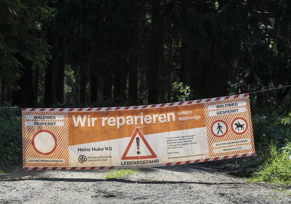 Die Waldwege sollen saniert werden.