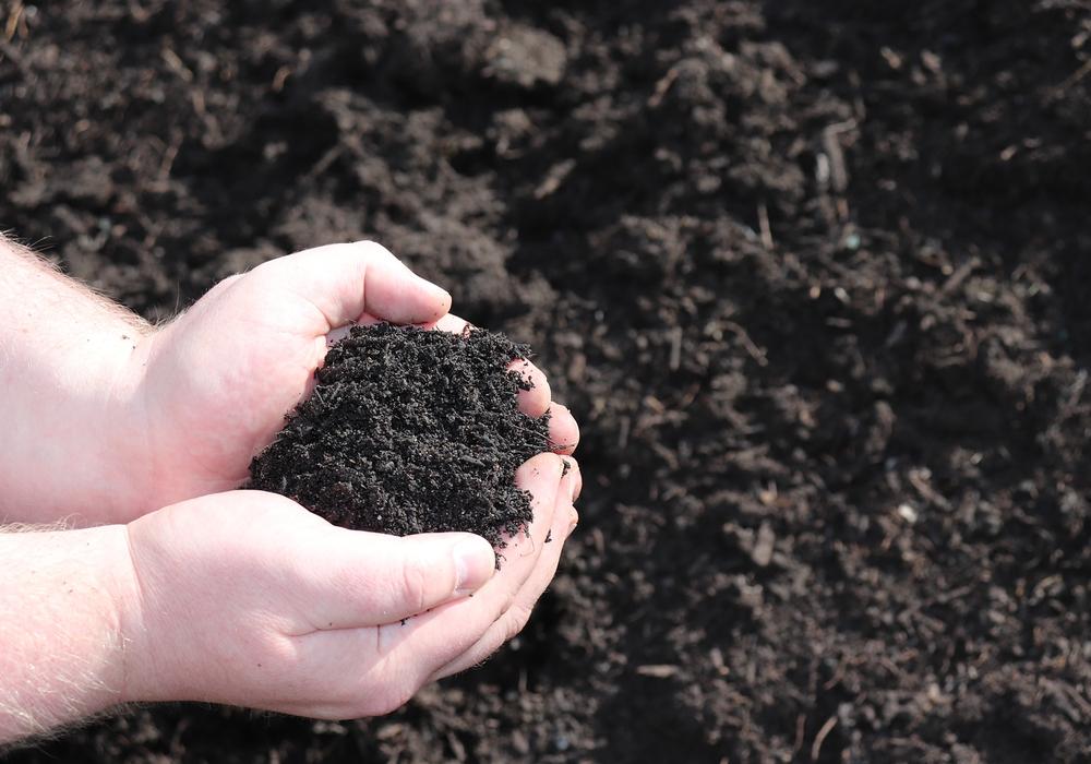 Der Kompost wird von ALBA verschenkt.