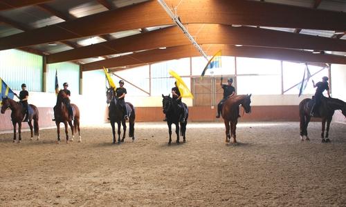 Die Fahnen sind für die Pferde das kleinste Problem.