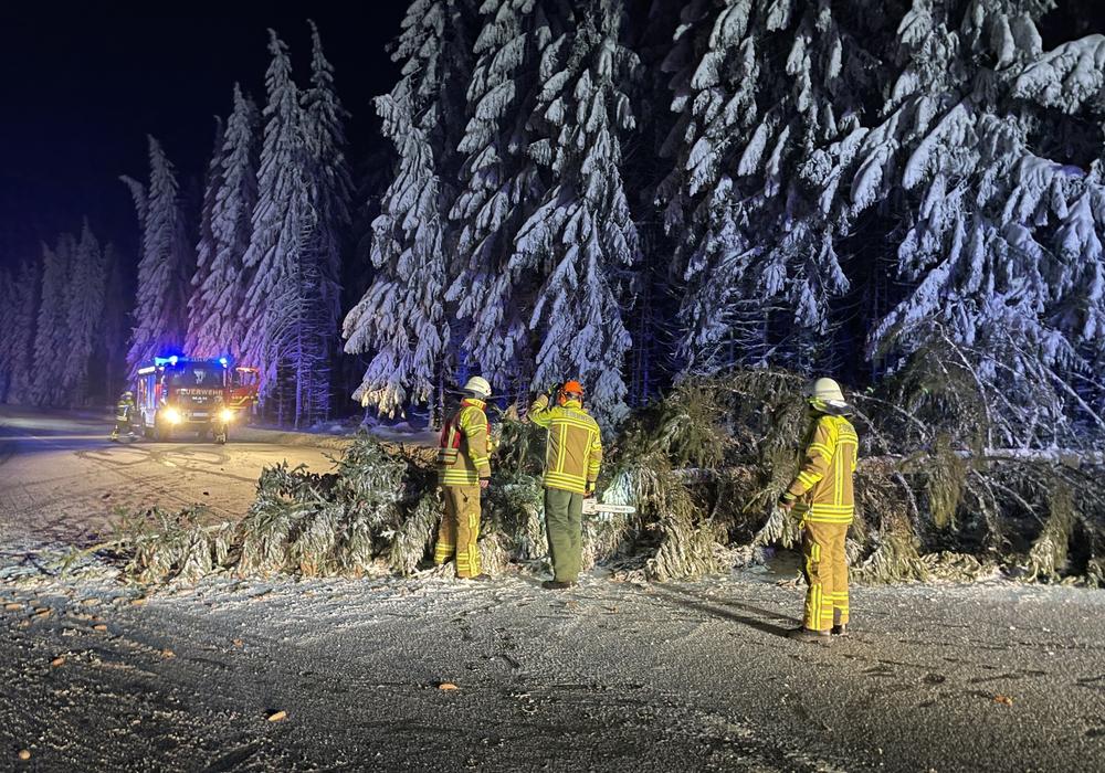 Der Baum war quer über die Fahrbahn gefallen.