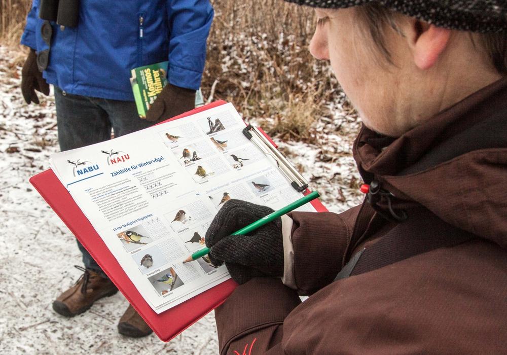 """Der NABU führt die Aktion """"Stunde der Wintervögel"""" seit mehreren Jahren durch. Archivbild"""