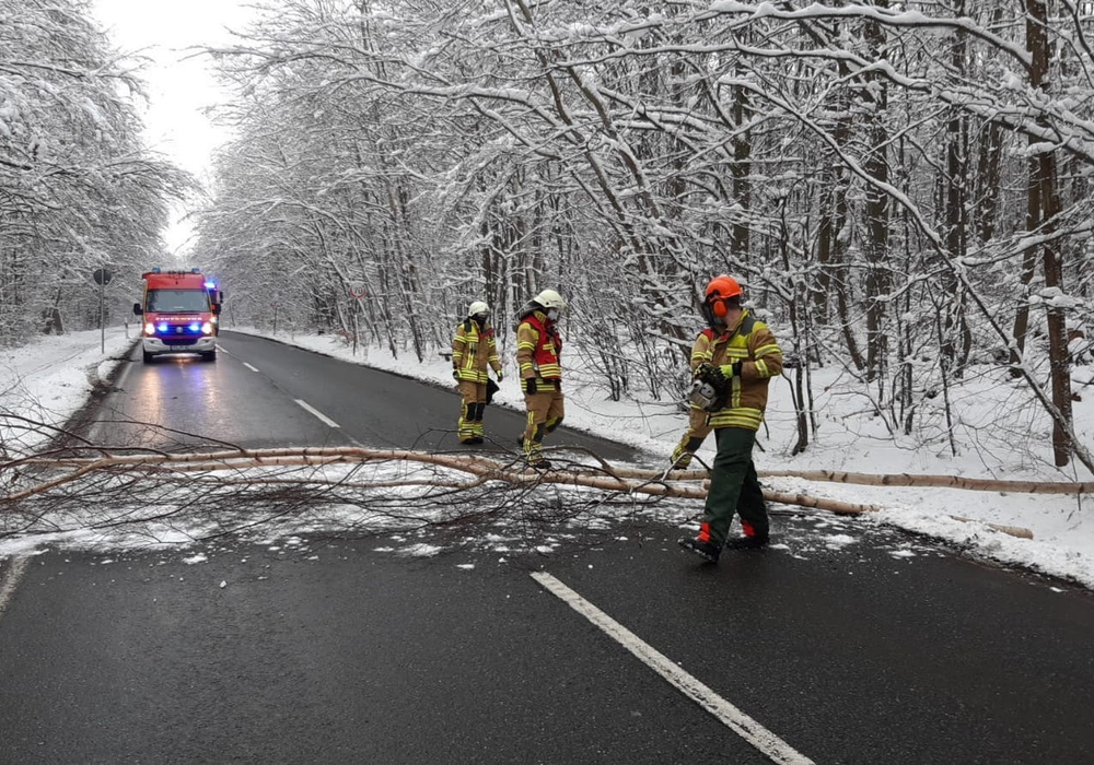 Die Feuerwehr Bad Harzburg beseitigt einen umgestürzten Baum.