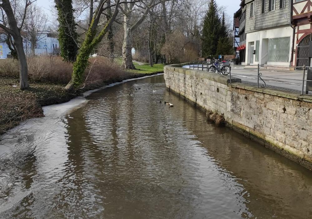 Voll, aber noch nicht übervoll. Das Schmelzwasser hat die Oker gut gefüllt, obgleich in Wolfenbüttel noch keine Meldestufen überschritten worden sind.