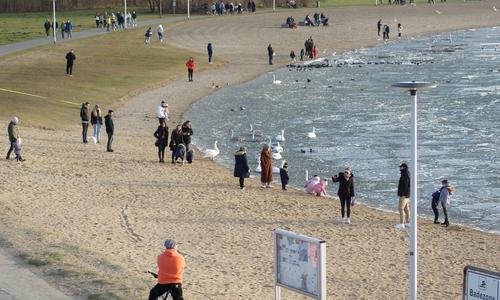 Wasser, Strand und Tiere - Der mit einer sehr brüchigen Eisschicht versehene Salzgittersee zog die Menschen in seinen Bann.