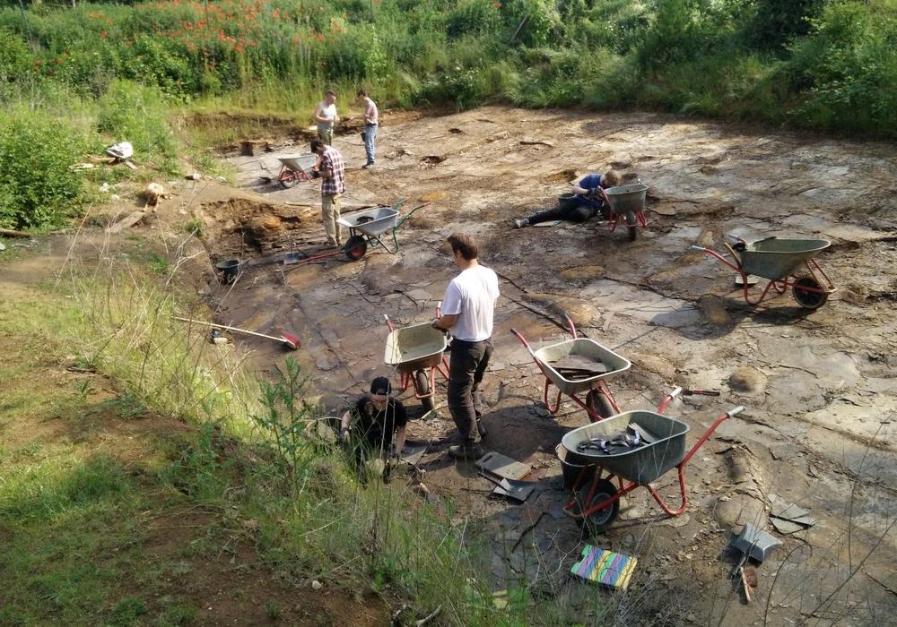 In Handarbeit werden die Schieferplatten im Geopunkt Jurameer nach Fossilien abgesucht.