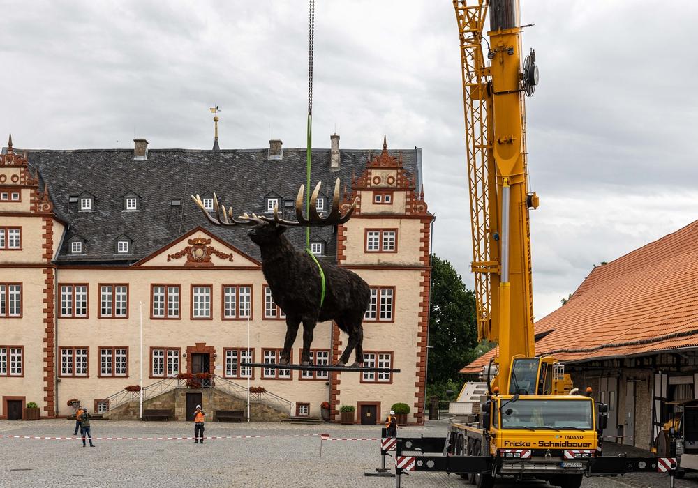 Der Riesenhirsch wurde mit dem Kran positioniert.