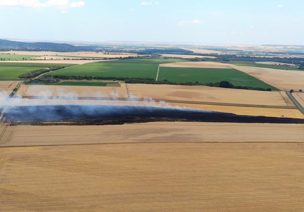 Bei Bad Harzburg brannten 1,5 Hektar Stoppelacker ab.