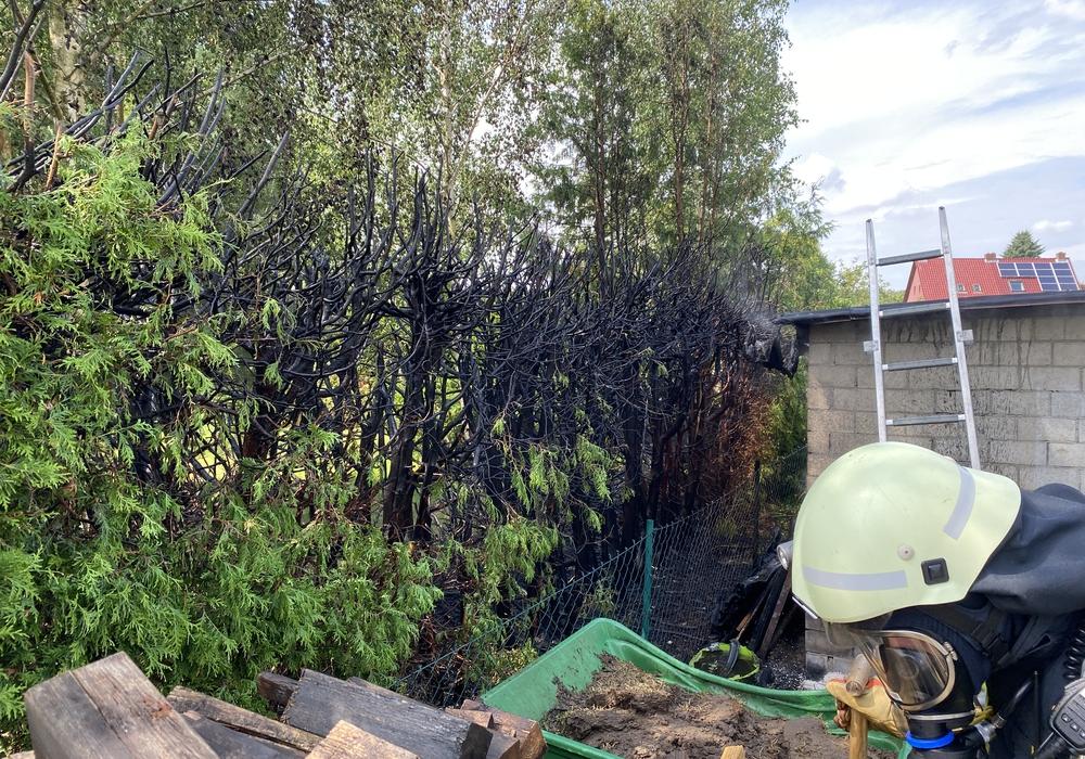 Die Hecke wurde durch das Feuer erheblich in Mitleidenschaft gezogen.