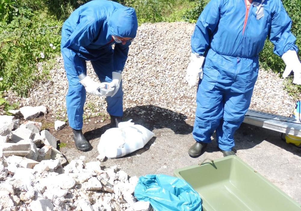 Bei der diesjährigen Tierseuchenübung zur Afrikanischen Schweinepest wurde unter anderem die Bergung von Fallwild geübt.