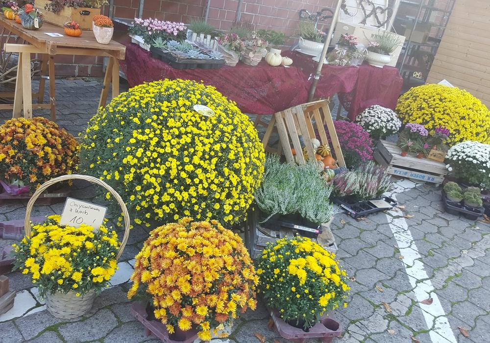 Der Herbstliche Kunsthandwerkermarkt soll am zweiten Oktoberwochenende 2021 stattfinden.